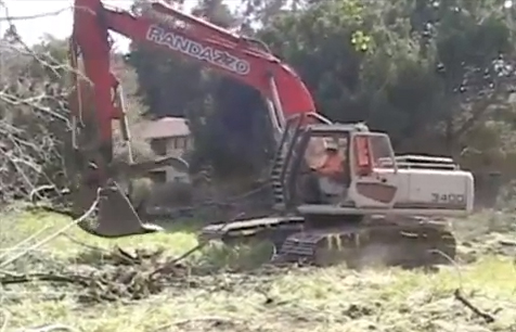 Tree-eating machine clearing land